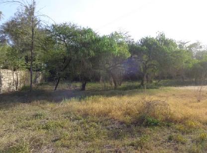 Kitengela Milimani estate